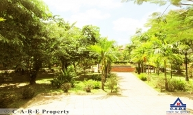 1675 sqm Green Land For Sale