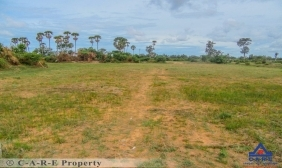 1.5 Hectare Land For Sale