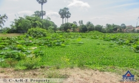 5256 Sqm Land For Rent
